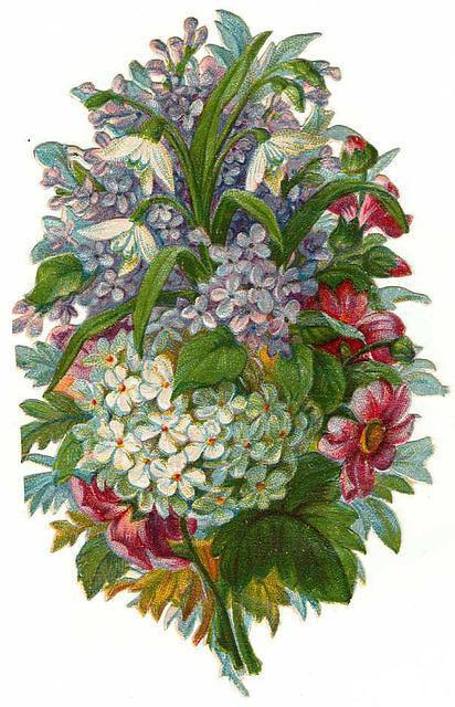 http://vintageimages.org/var/resizes/Flowers/Flowers14.jpg?m=1314016650
