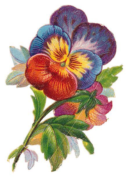 http://vintageimages.org/var/resizes/Flowers/Flowers266.jpg?m=1314016842