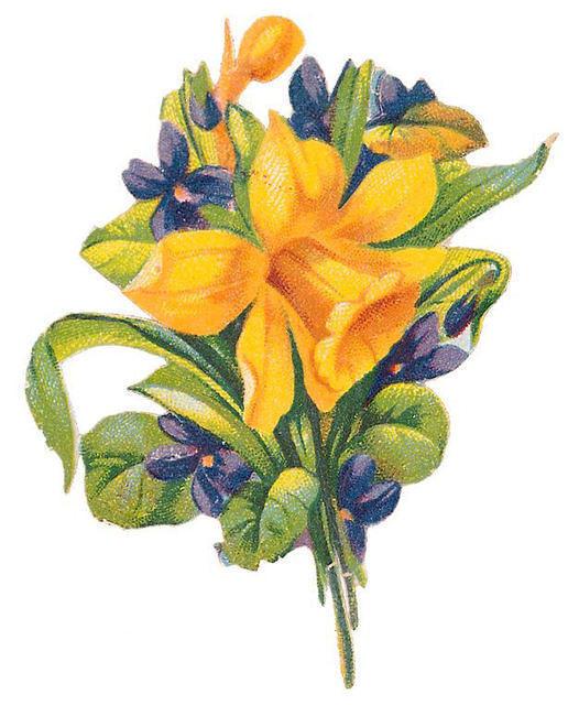 http://vintageimages.org/var/resizes/Flowers/Flowers277.jpg?m=1314016853