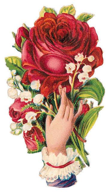 http://vintageimages.org/var/resizes/Flowers/Flowers289.jpg?m=1314016862
