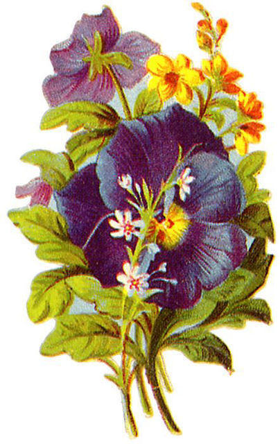 http://vintageimages.org/var/resizes/Flowers/Flowers308.jpg?m=1314016876