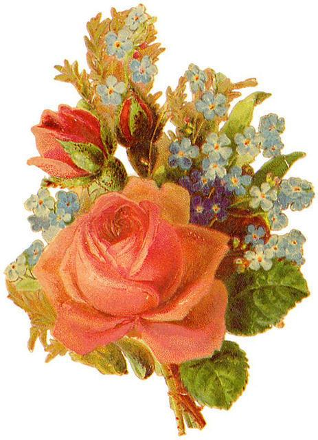 http://vintageimages.org/var/resizes/Flowers/Flowers309.jpg?m=1314016877