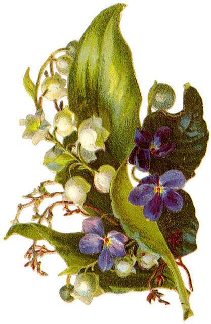 http://vintageimages.org/var/resizes/Flowers/Flowers312.jpg?m=1314016879
