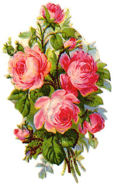 http://vintageimages.org/var/resizes/Flowers/Flowers318.jpg?m=1314016883