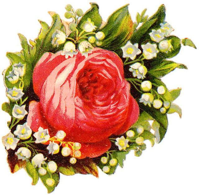 http://vintageimages.org/var/resizes/Flowers/Flowers323.jpg?m=1314016886