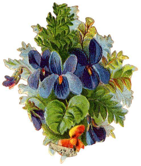 http://vintageimages.org/var/resizes/Flowers/Flowers381.jpg?m=1314016927