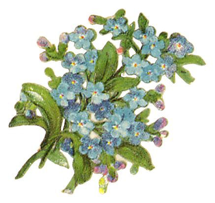 http://vintageimages.org/var/resizes/Flowers/Flowers399.jpg?m=1314016941