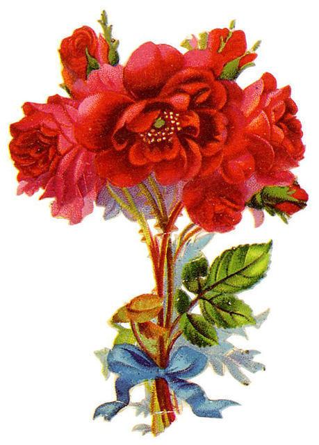 http://vintageimages.org/var/resizes/Flowers/Flowers447.jpg?m=1314016978