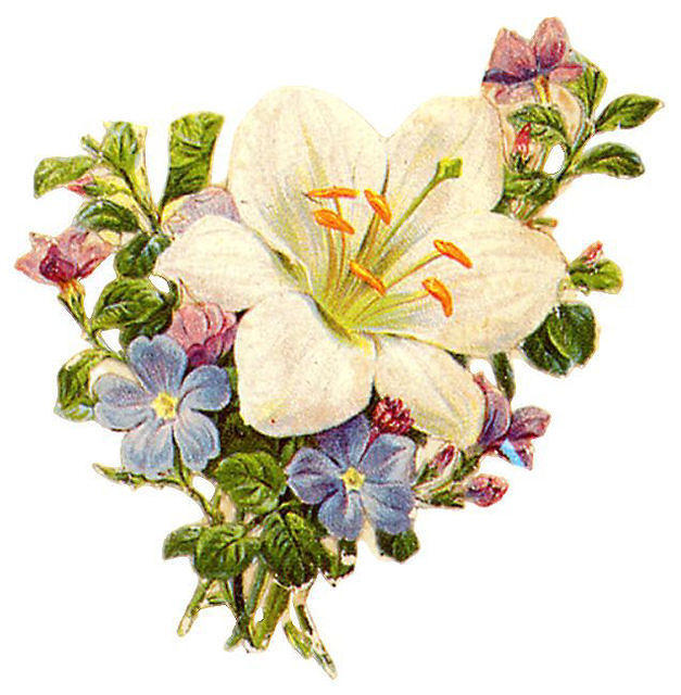 http://vintageimages.org/var/resizes/Flowers/Flowers453.jpg?m=1314016983