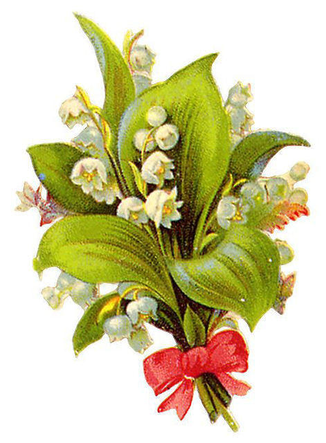 http://vintageimages.org/var/resizes/Flowers/Flowers454.jpg?m=1314016983
