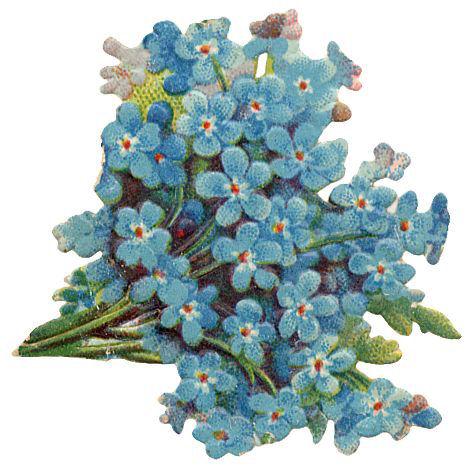 http://vintageimages.org/var/resizes/Flowers/Flowers488.jpg?m=1314017013