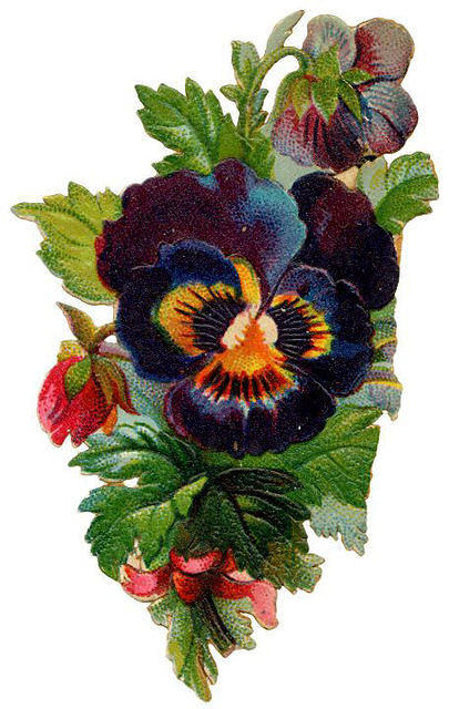 http://vintageimages.org/var/resizes/Flowers/Flowers510.jpg?m=1314017033