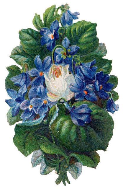 http://vintageimages.org/var/resizes/Flowers/Flowers522.jpg?m=1314017044