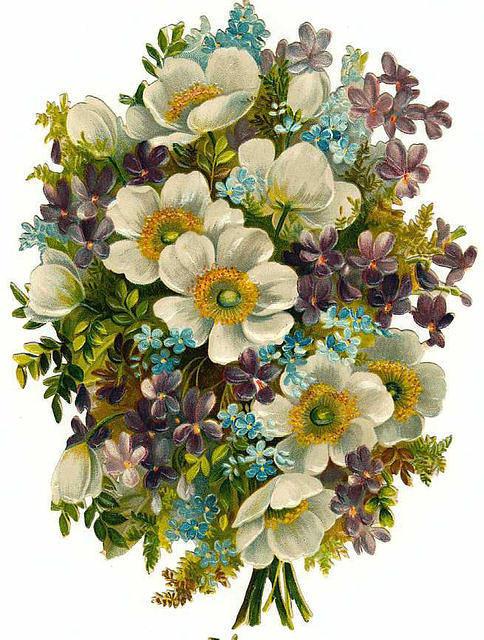 http://vintageimages.org/var/resizes/Flowers/Flowers566.jpg?m=1314017082
