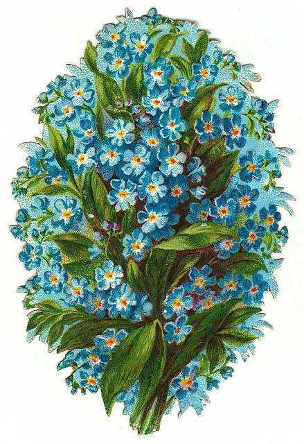 http://vintageimages.org/var/resizes/Flowers/Flowers627.jpg?m=1314017131