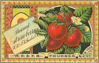 Vintage Ads & Labels (133)