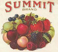Vintage Ads & Labels (146)