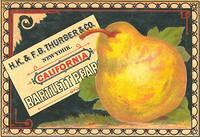 Vintage Ads & Labels (8)